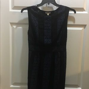 NWT Sophie Max sheath dress—great deal—get it now